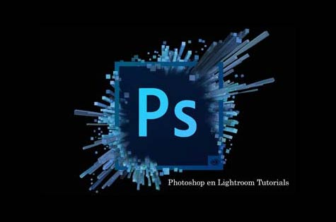 Rayms Fotosite Lightroom en Photoshop tutorials, uitleg maskers gebruiken in Photoshop, een hdr maken in Lightroom, een panorama maken in Photoshop, een handeling maken in Photoshop, perspectief aanpassen Photoshop.