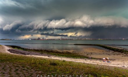 Shelfcloud Hoek van Holland